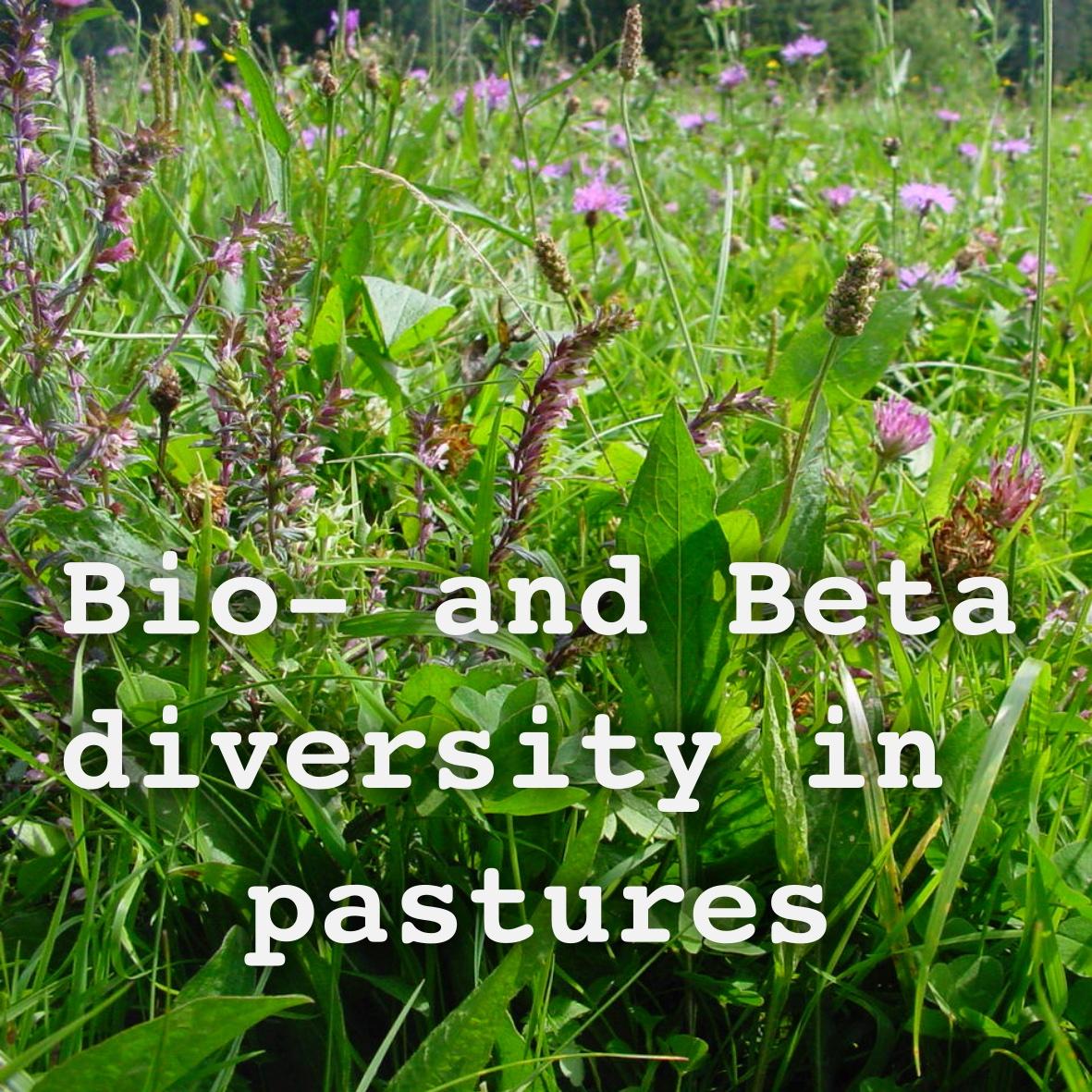 Bio- and Beta Diversity in Pastures